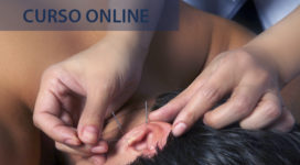 auriculoterapia curso online 2