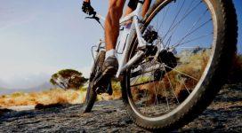instema ciclismo